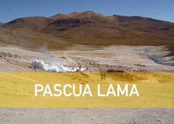 ILEGALIDAD E IMPUNIDAD(¿Quién permite el proyecto Pascua Lama de Barrick Gold?)